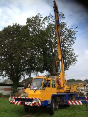 tree surgeons in basingstoke driving a crane for tree removal
