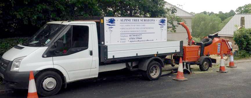 Tree Surgeons Southampton