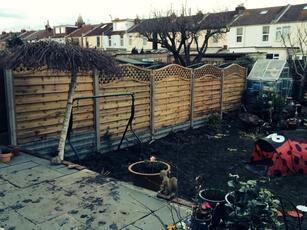 fencing(1)