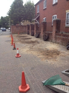 stump grinding work in Basingstoke